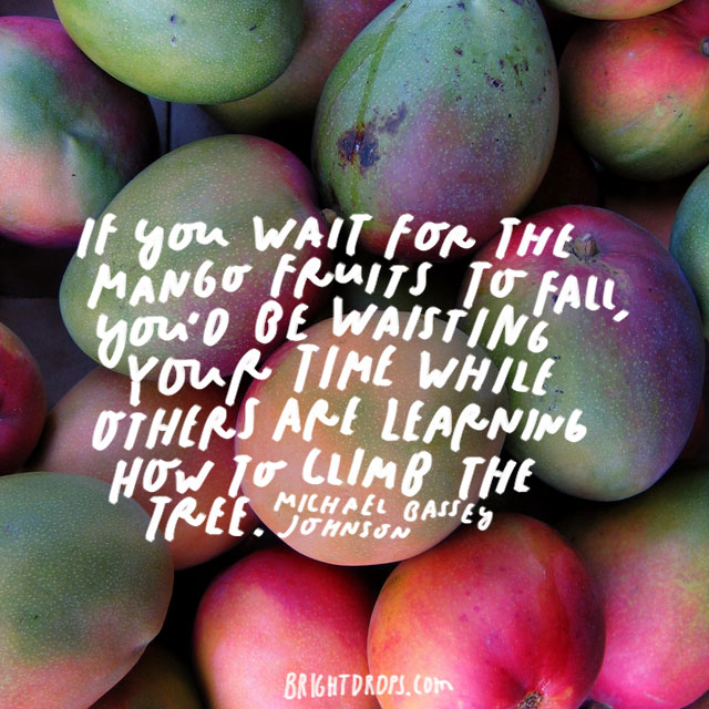 """If you wait for the mango fruits to fall, you'd be wasting your time while others are learning how to climb the tree."" – Michael Bassey Johnson"