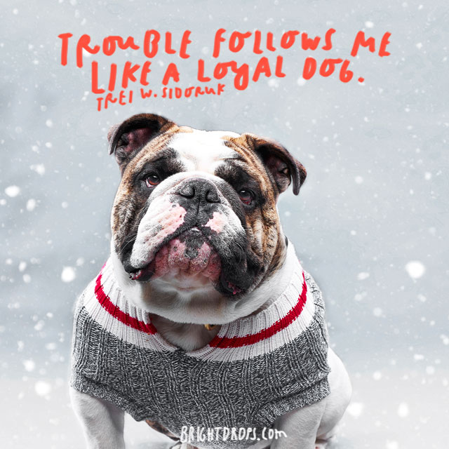 """Trouble follows me like a loyal dog."" – Trel W. Sidoruk"