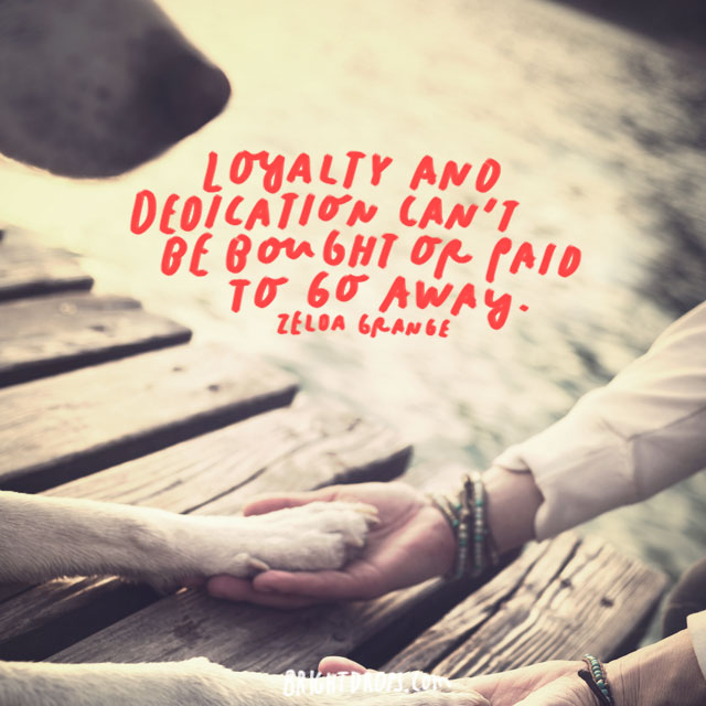 """Loyalty and dedication can't be bought or paid to go away."" - Zelda Grange"