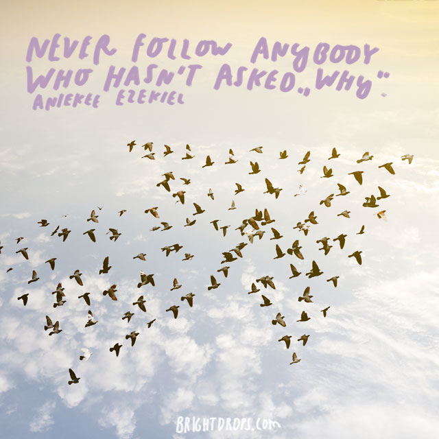 """Never follow anybody who hasn't asked ""why"" - Aniekee Ezekiel"