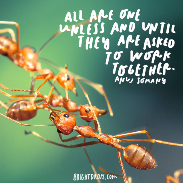 """All are one unless and until they are asked to work together."" - Anuj Somany"