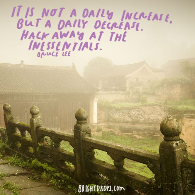 """It is not a daily increase, but a daily decrease. Hack away at the inessentials."" - Bruce Lee"