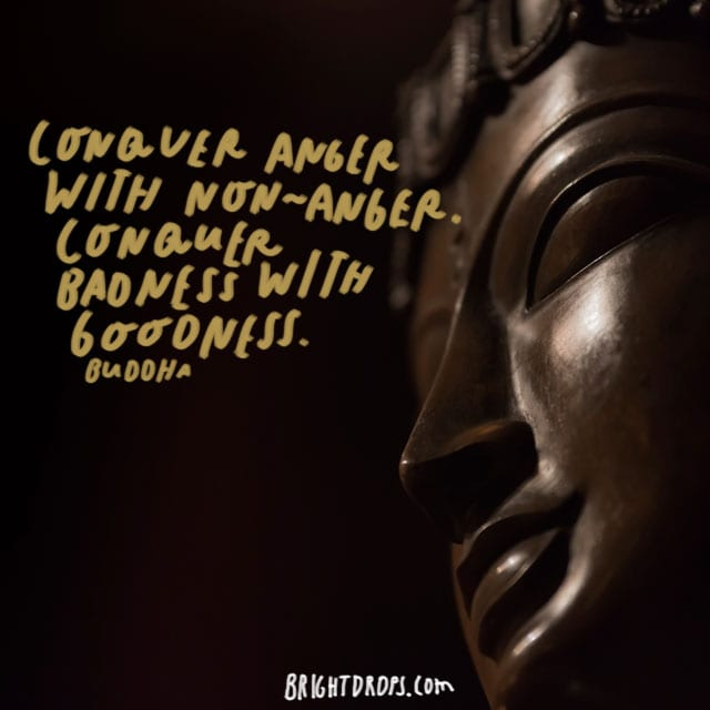 """Conquer anger with non-anger. Conquer badness with goodness."" – Buddha"