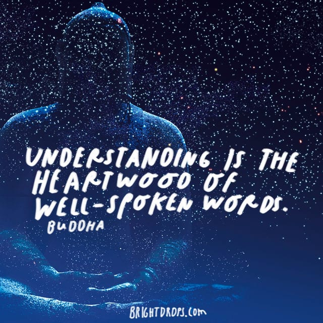 """Understanding is the heartwood of well-spoken words."" – Buddha"