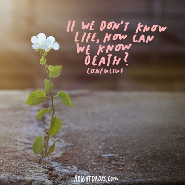 """If we don't know life, how can we know death?"" Confucius"