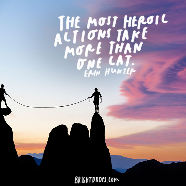 """The most heroic actions take more than one cat."" - Erin Hunter"