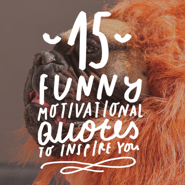 Motivation can be hard to come by on some days. If you'd like not only some motivation but some laughs, scroll through our list of funny motivational quotes.