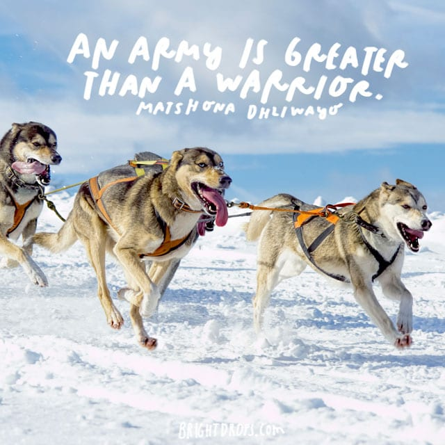 """An army is greater than a warrior."" - Matshona Dhliayor"