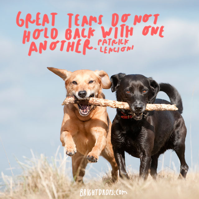 """""""Great teams do not hold back with one another."""" - Patrick Lencioni"""