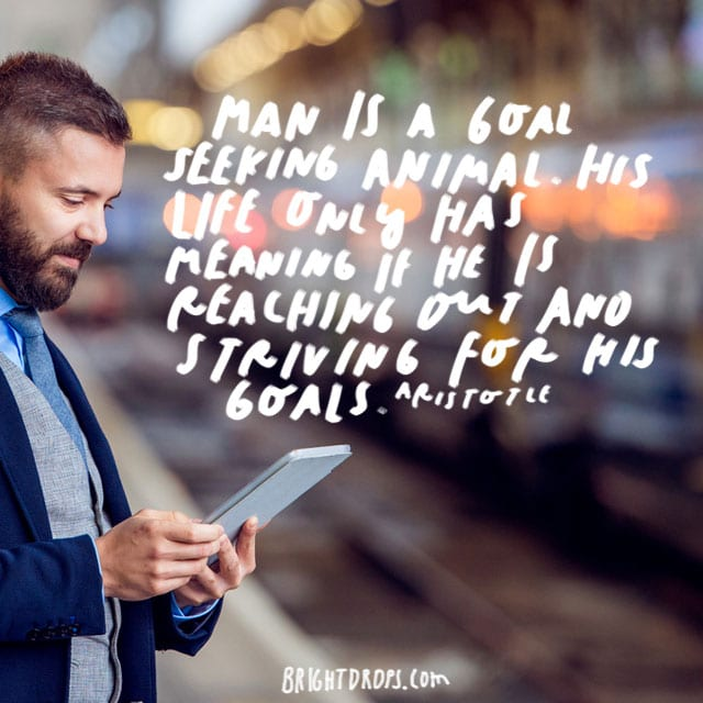 """Man is a goal seeking animal. His life only has meaning if he is reaching out and striving for his goals."" - Aristotle"