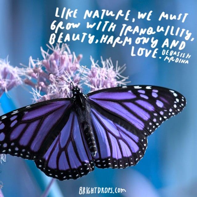 """Like nature, we must grow with tranquility, beauty, harmony, and love."" - Debasish Mrdiha"