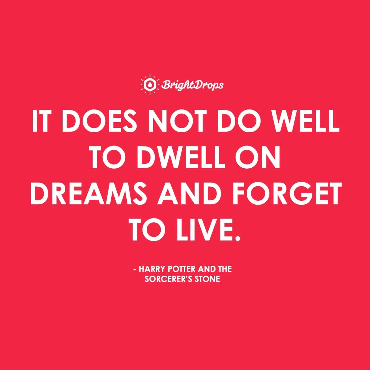 It does not do well to dwell on dreams and forget to live. - Harry Potter and the Sorcerer's Stone