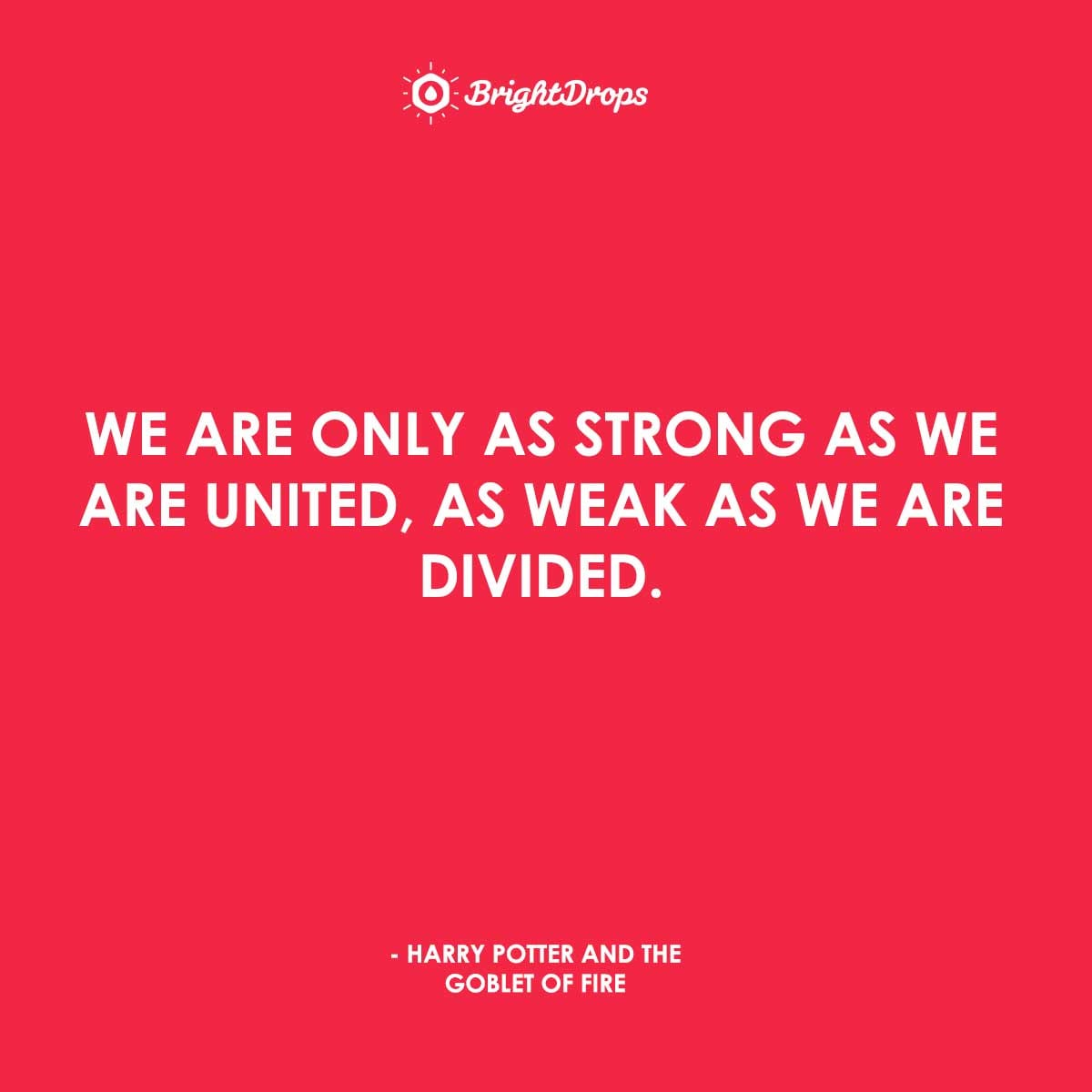 We are only as strong as we are united, as weak as we are divided. - Harry Potter and the Goblet of Fire