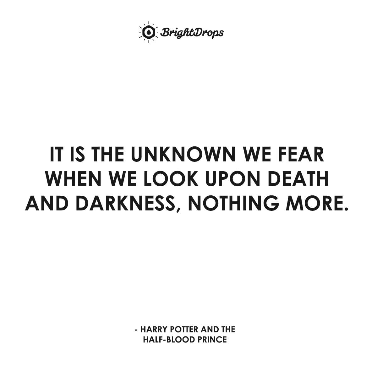 It is the unknown we fear when we look upon death and darkness, nothing more. - Harry Potter and the Half-Blood Prince