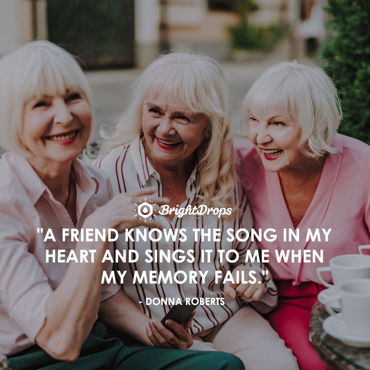 """A friend knows the song in my heart and sings it to me when my memory fails."" - Donna Roberts"