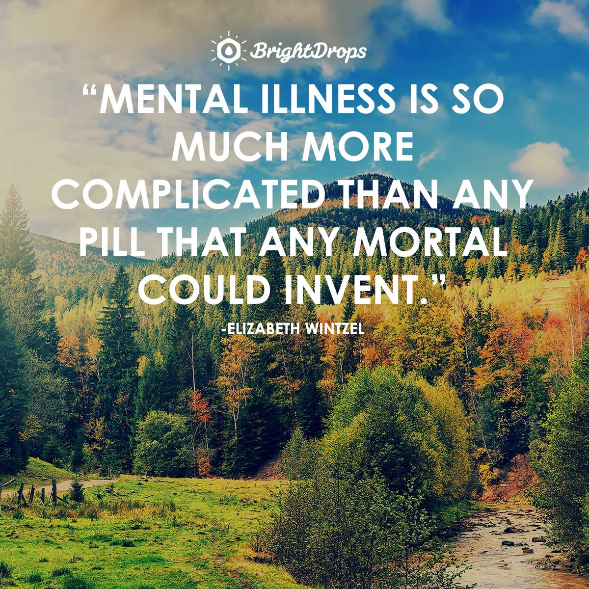 Mental illness is so much more complicated than any pill that any mortal could invent. -Elizabeth Wintzel