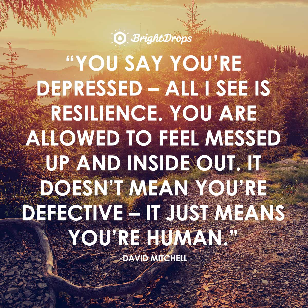 You say you're depressed – all I see is resilience. You are allowed to feel messed up and inside out. It doesn't mean you're defective – it just means you're human. -David Mitchell, Cloud Atlas