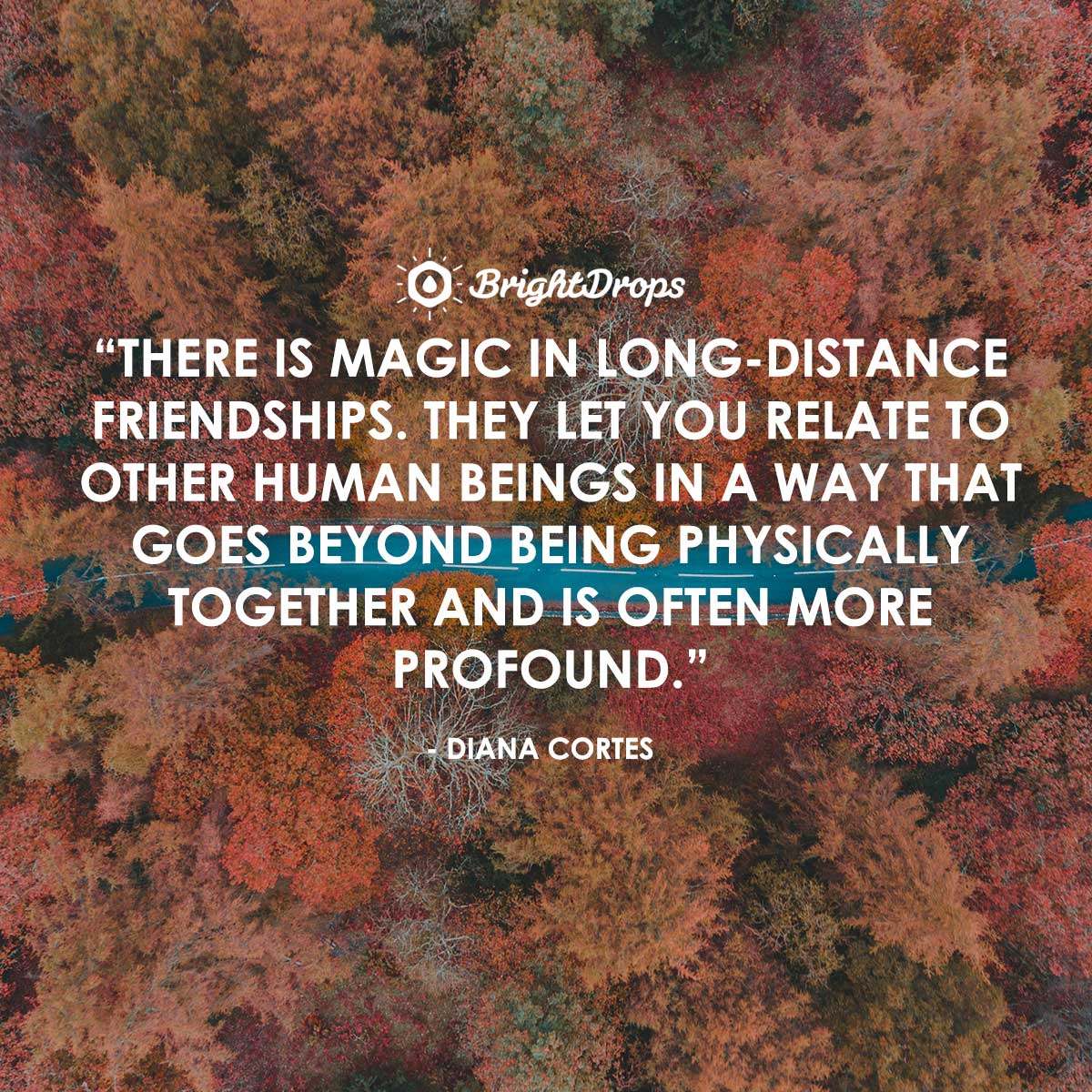 There is magic in long-distance friendships. They let you relate to other human beings in a way that goes beyond being physically together and is often more profound. - Diana Cortes
