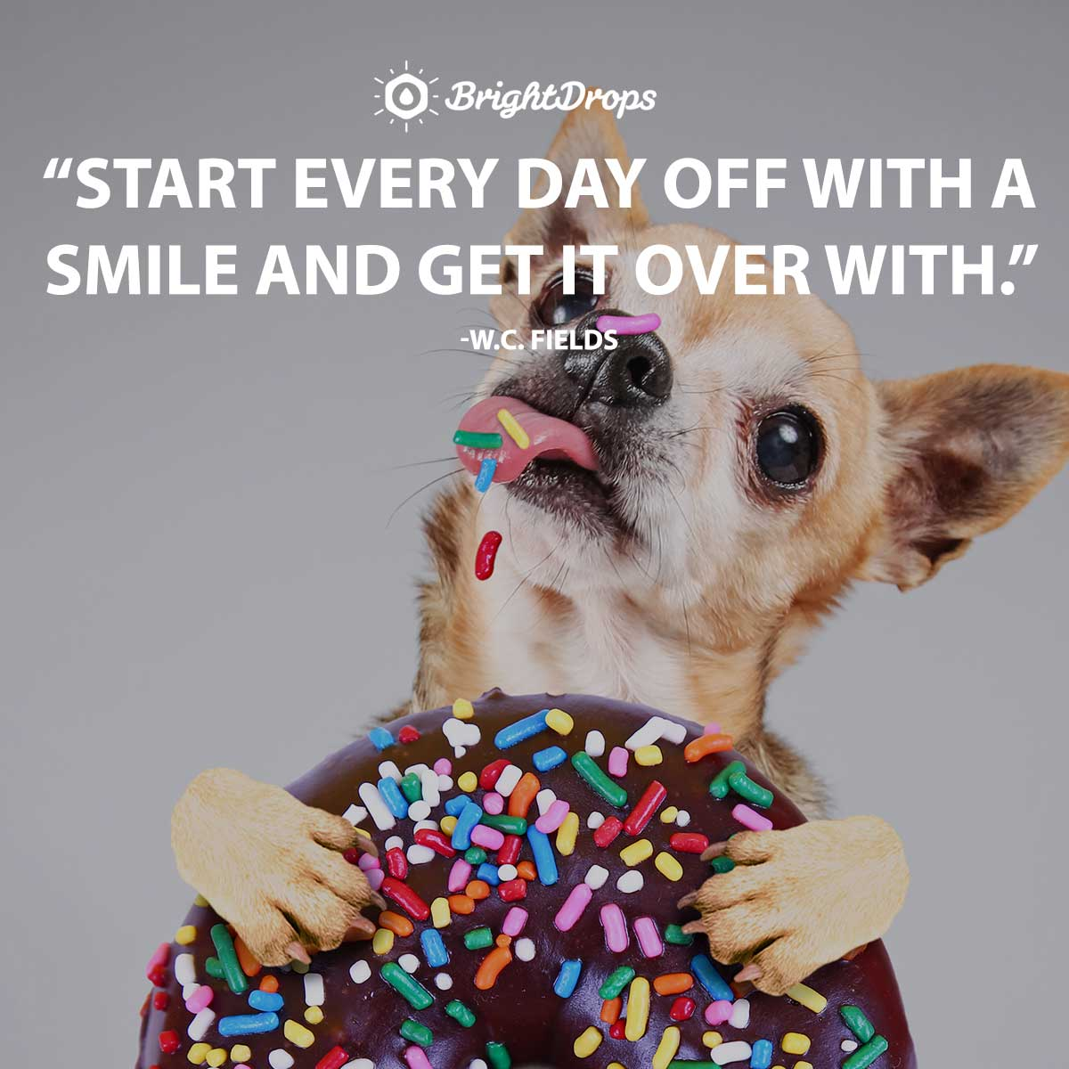Start every day off with a smile and get it over with - W.C. Fields