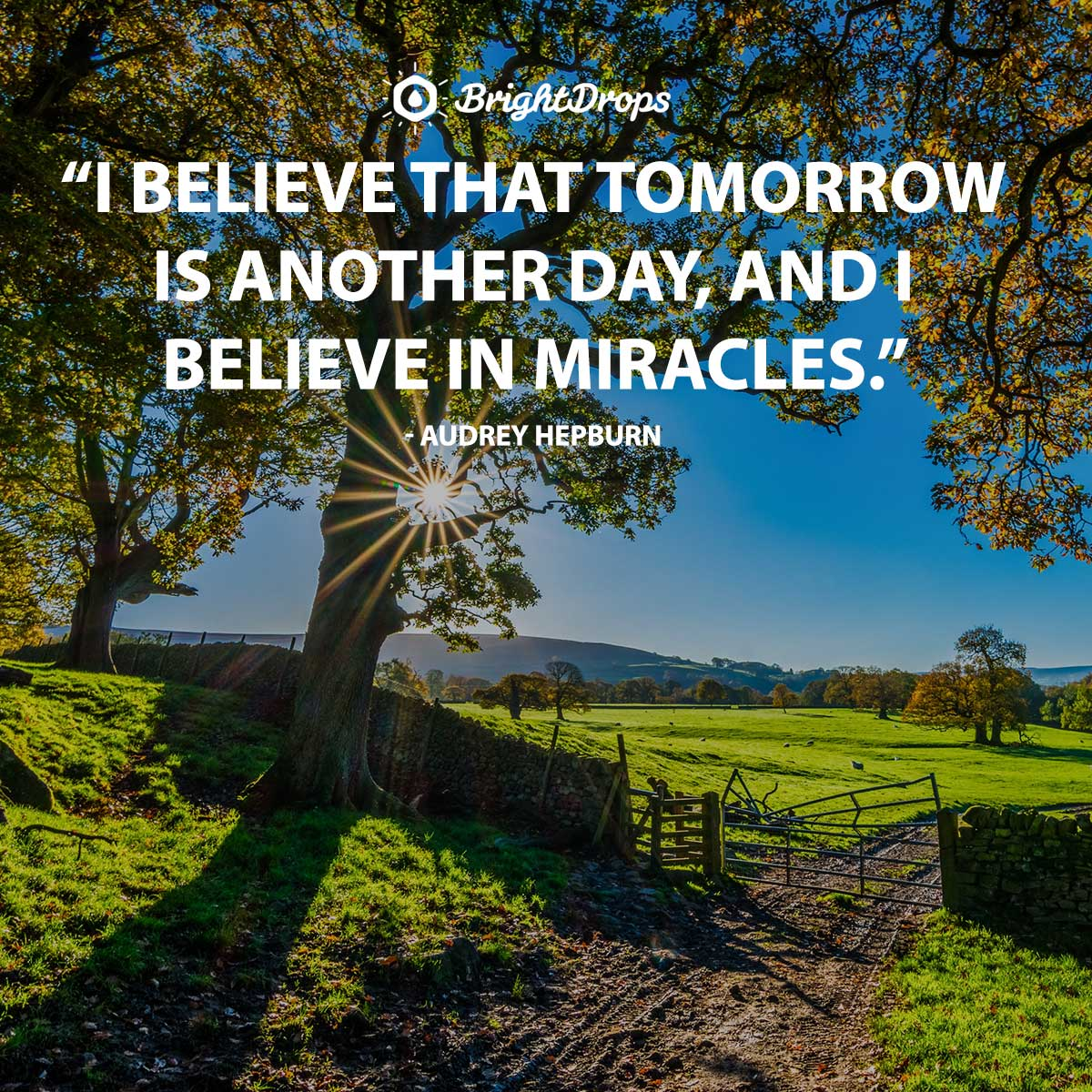 I believe that tomorrow is another day, and I believe in miracles. - Audrey Hepburn