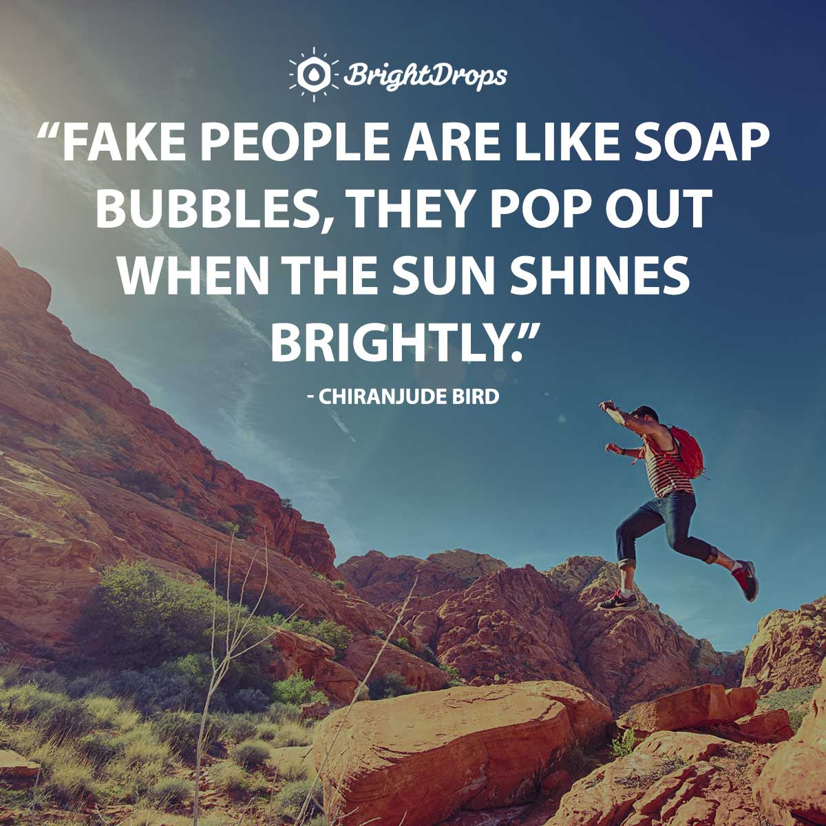 Fake people are like soap bubbles, they pop out when the sun shines brightly. - Chiranjude Bird