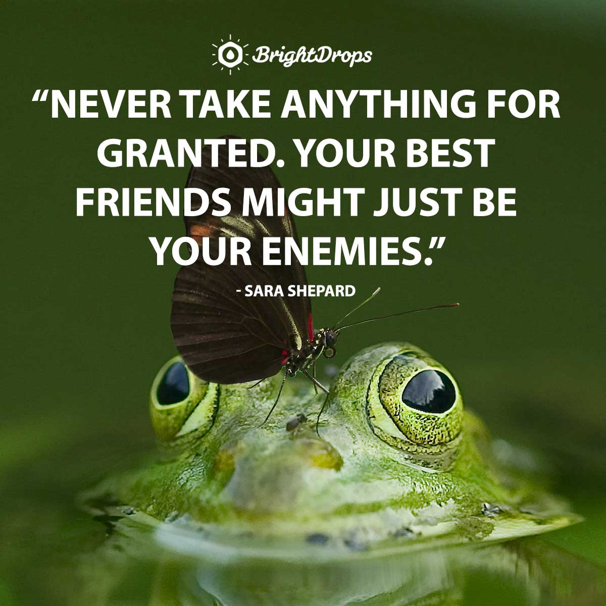 Never take anything for granted. Your best friends might just be your enemies. - Sara Shepard