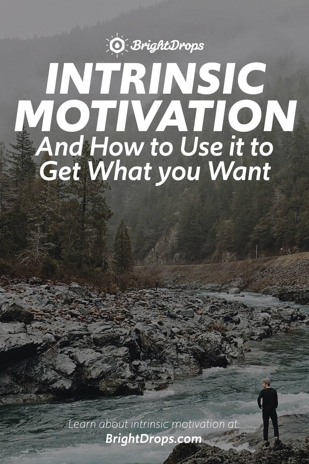 Intrinsic Motivation and How to Use It to Get What You Want