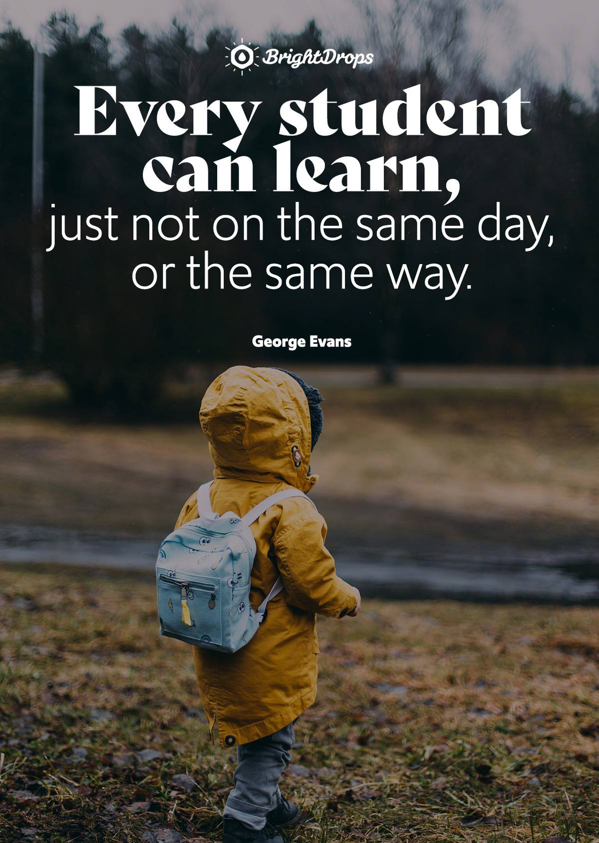 Every student can learn, just not on the same day, or the same way. - George Evans