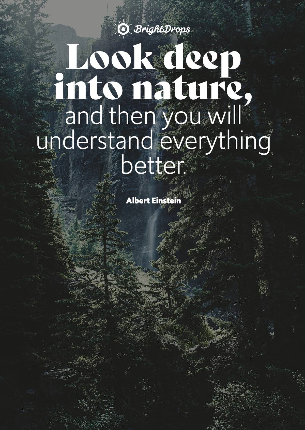9 Inspirational Nature Quotes on Life and Its Natural Beauty