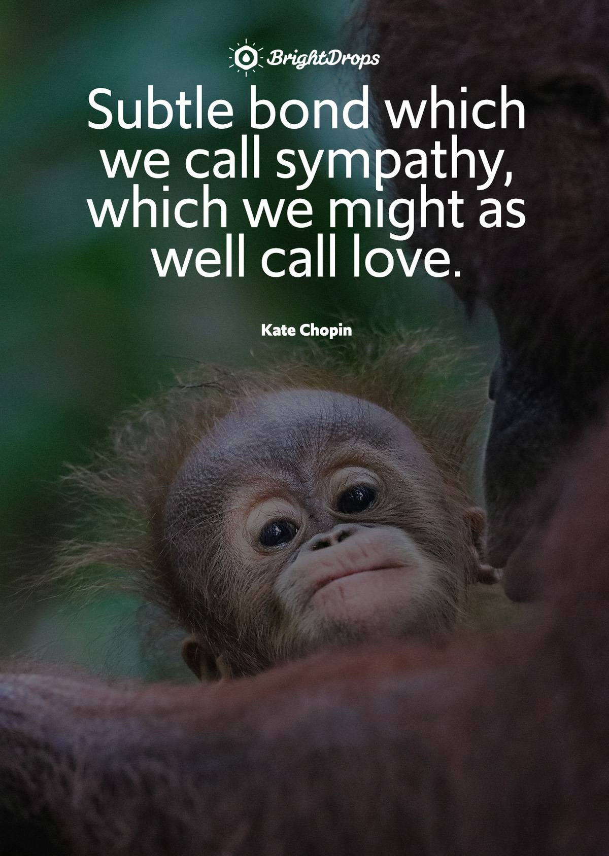"""Subtle bond which we call sympathy, which we might as well call love."" - Kate Chopin"