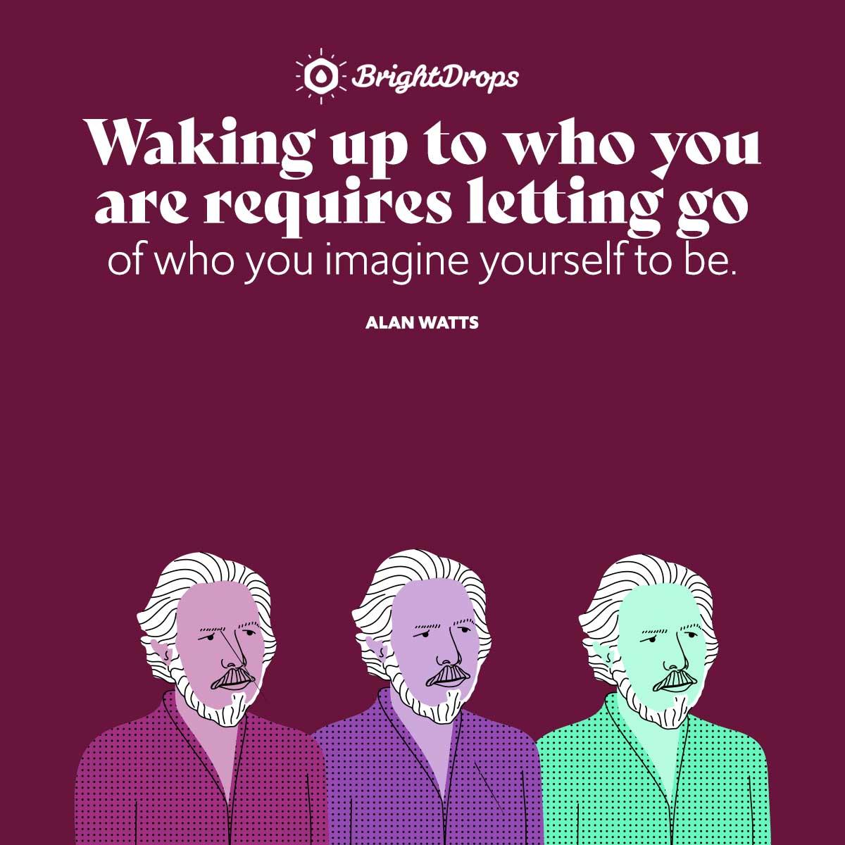 Alan Watts Quotes On Self