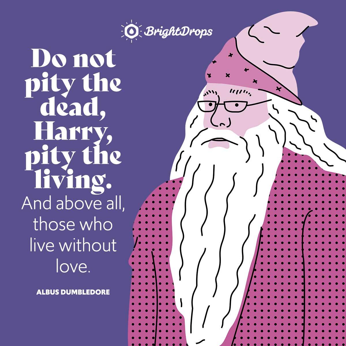Albus Dumbledore Quotes For Harry