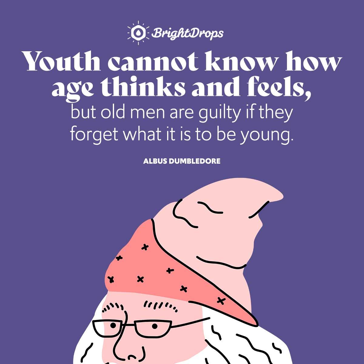 Albus Dumbledore Quotes On Age