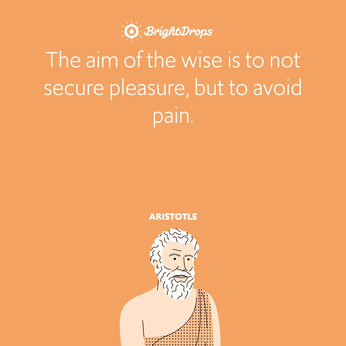 The aim of the wise is to not secure pleasure, but to avoid pain.