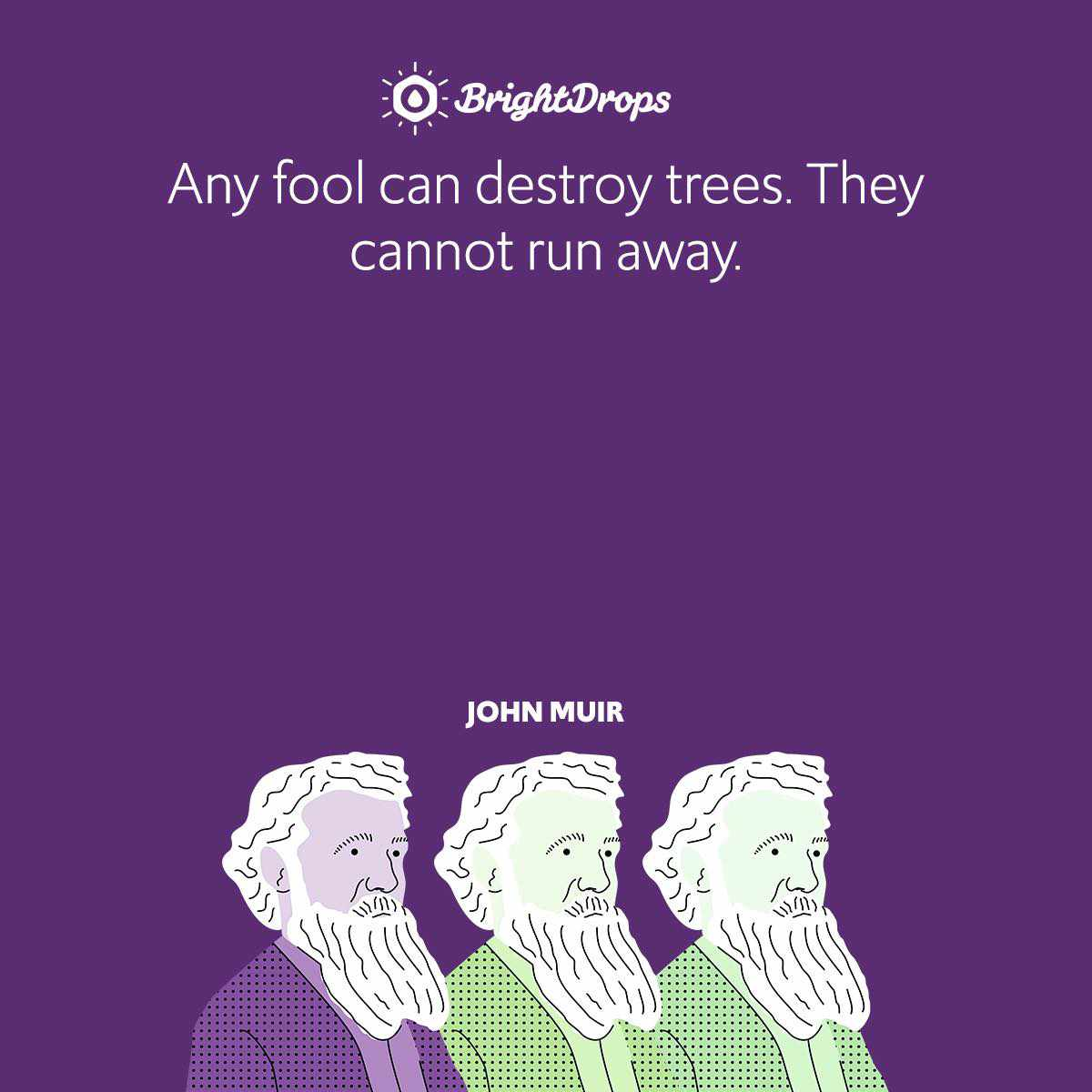Any fool can destroy trees. They cannot run away.