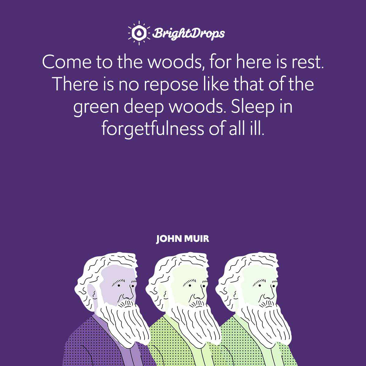 Come to the woods, for here is rest. There is no repose like that of the green deep woods. Sleep in forgetfulness of all ill.