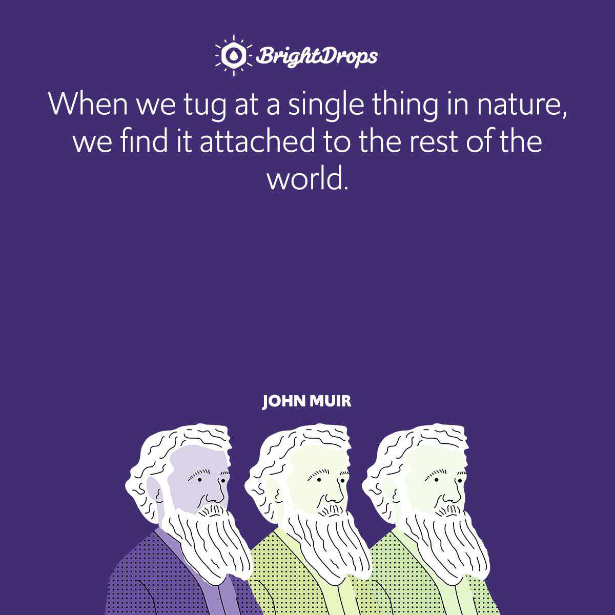 When we tug at a single thing in nature, we find it attached to the rest of the world.