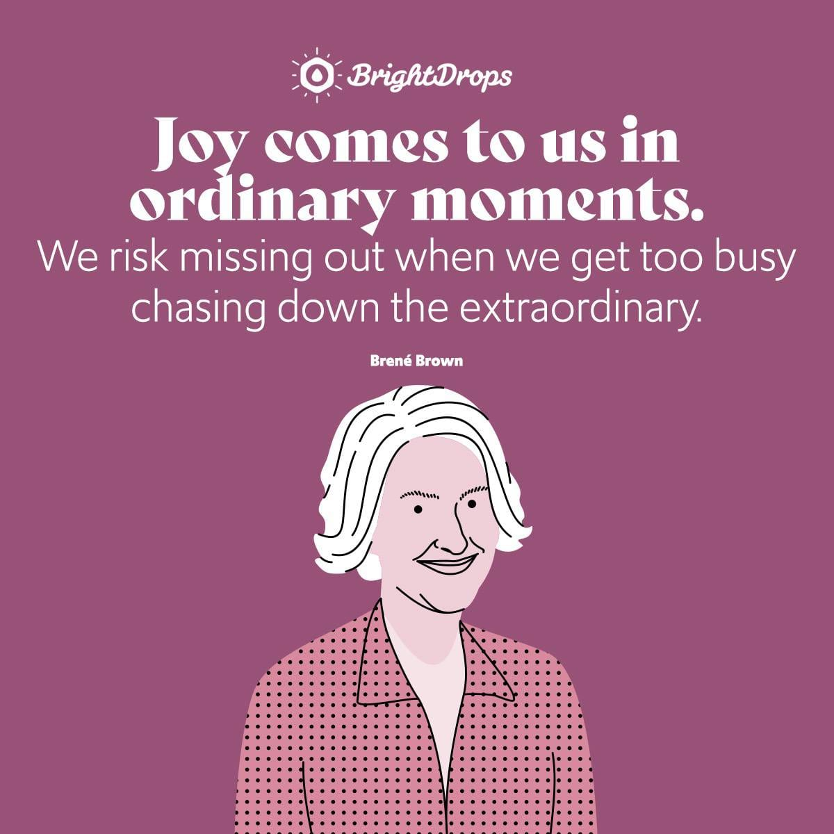 Joy comes to us in ordinary moments. We risk missing out when we get too busy chasing down the extraordinary. - Brene Brown